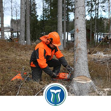 SAYEM Personel Belgelendirme Orman Üretim İşçisi